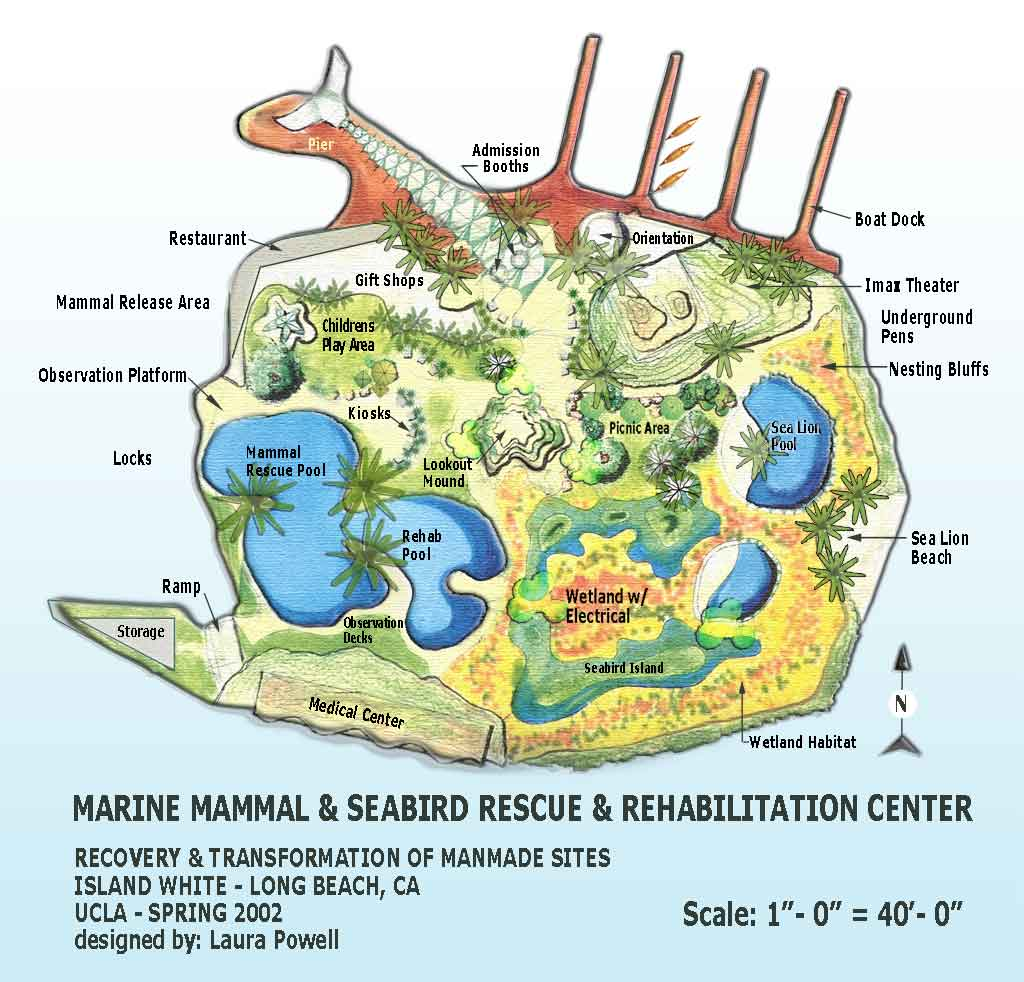Island White – A Marine Mammal & Seabird Rescue Center