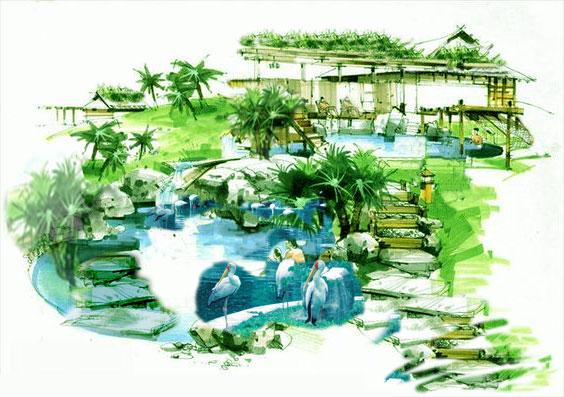 wings-pelican-pond